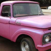 1961 FORD F100 BAKKIE FOR SALE