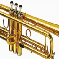 TRUMPET LACQUER for sale  Springs