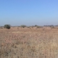 Serviced stand plot available North of Pretoria