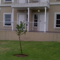 Buccleuch 1bed, bath, kitchen, lounge Rental R5200