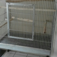 birdcage for sale
