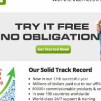 SFI Home Business Opportunity
