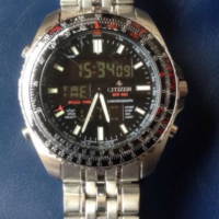 Citizen Promaster for Pilots