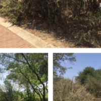 Vaal de Grace Nature Estate Stand For Sale