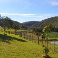 Beautiful 187ha farm for sale