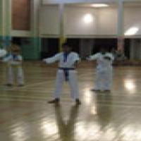 Goju Ryu Karate Do for sale  Kloof