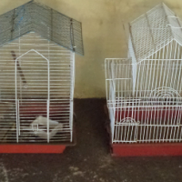 Various Canary/Budgie indoor bird cages for sale