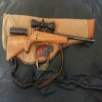 22 Norinco Gun