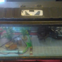 "4""foot Fish tank and stand"