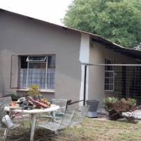 BULTFONTEIN 8,5ha with piggery