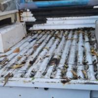 Isuzu SWB bin for sale clean 1991/1997