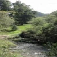 3000 ha Game Farm