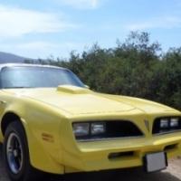 1978 Pontiac Firebird Trans Am T-top Sedgefield, Western Cape