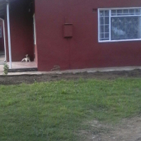 House to let in northcrest mthatha