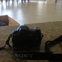 SALE OF SONY DIGITAL CAMERA WITH LENS Title: SONY  DIGITAL CAMERA Category: Electronics > Cameras &