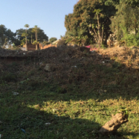 Land for sale in MALAWI or shared ownership development opportunity