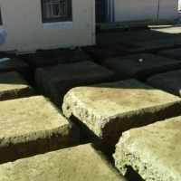 Bluff Soil Poisoning Services - 072 390 9626
