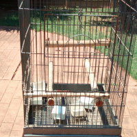 Parrot bird cage with stand