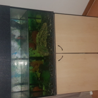 180 litre fish tank with stand