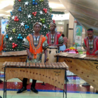 Marimbas bring an unforgettable African vibe to any party or venue!