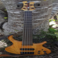 Bass Guitar - Tobias 5 String Growler, bought new in 2002 and has rarely been used. R16,500 ONCO