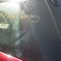 Ford Territory rear glass for sale!