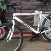Spalding 21spd Mountain bike