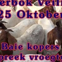 Boerbok Veiling 25 Oktober