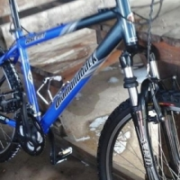DIAMANT BACK BIKE FOR SALE