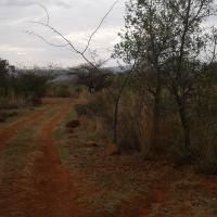 30 Hectare bushveld