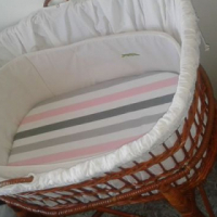 Adjustable Moses Crib