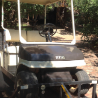 Petrol golf cart with trailer for sale