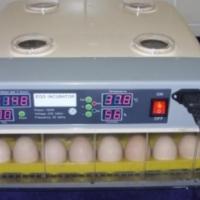 Automatic incubators for breeding chicken quail etc