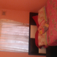 Pet friendly furnished room