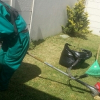 Witness garden service