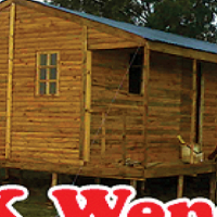 We do Pallet wood, knotty pine, log & louvre wendys
