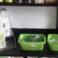 Doggy parlour and pet shop for sale