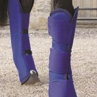 HORSE TRAVEL BOOTS