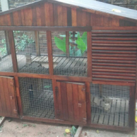Bunny house for sale