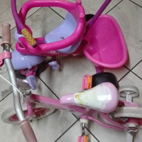 Tricycle with bike