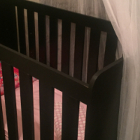 Cot for sale!