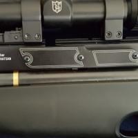Hatsan AT44-10 Pellit Gun