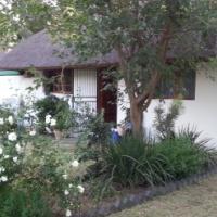 Pet friendly garden cottage
