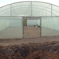 Green House Tunnels for sale