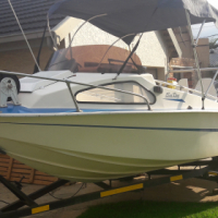 16 Foot Monohull Deep sea bout with 2 x 85 Jamaha