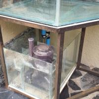 Corner marine fish tank