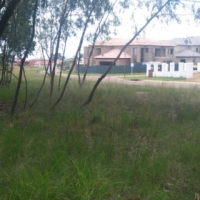 Stand for Sale. Magalies county estate
