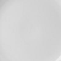 Fortis narrow rimmed plate 22cm