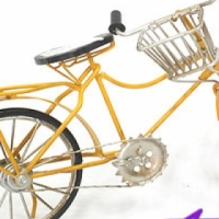 Vintage Classic Bicycle Model