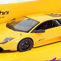 Lamborghini 1:14scale Radio Control Car